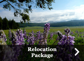 Relocation Package